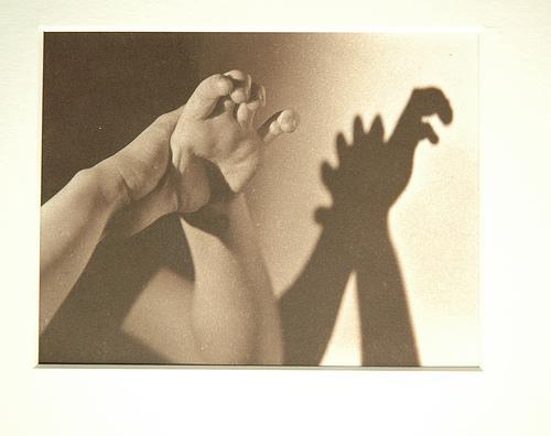 dino-shadow